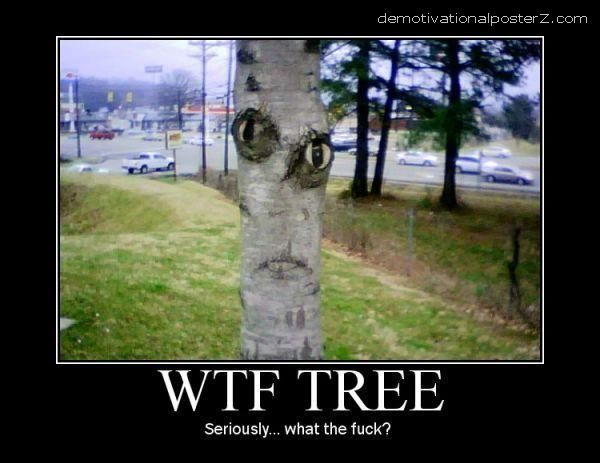 WTF Tree motivational poster