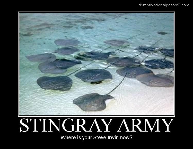 stingray army motivational poster