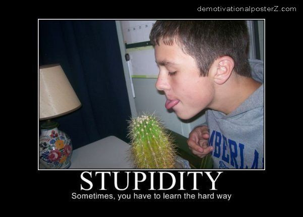 stupidity motivational poster