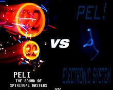 peli - spiritual master vs electronic system 2008