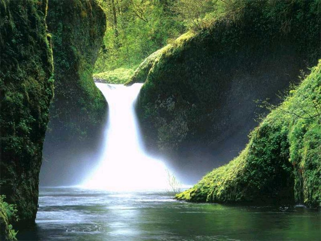 beautiful garden waterfalls screensaver 27842 - Certain pieces really make my hart sad with joy.