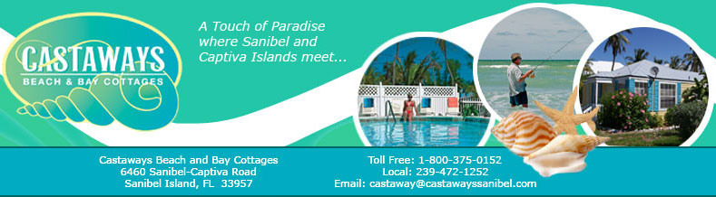 The Castaways Beach and Bay Cottages