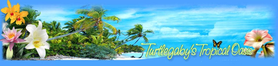 Turtlegaby's Tropical Oasis