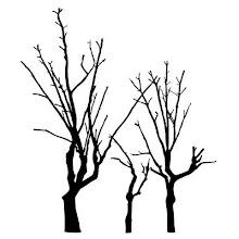 árbol.es