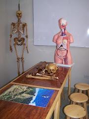 Nuestro laboratorio de Anatomía