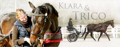 Klara og Trico