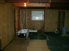 another view of the main bathroom