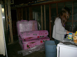 Insulation ready to go in