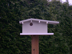 Atomic Ranch Birdhouse