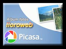Albumes Fotos Picasa