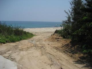 往海灘的小路分岔處,大興土木?