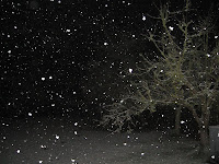 Snow in April: Snowfall at Night