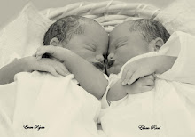 My sweet nephews, BORN AS ANGELS INTO GOD'S LOVING ARMS; EVAN & ETHAN 12/26/2009
