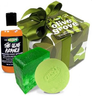 cosmetics and lush company Lush handmade cosmetics was founded by mark constantine, liz weir and few  other colleagues in 1995 the company produces hair and.