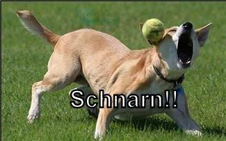 Schnarn!!