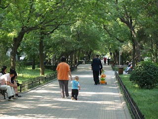 young child holds his grandmother's hand while walking down a leafy street