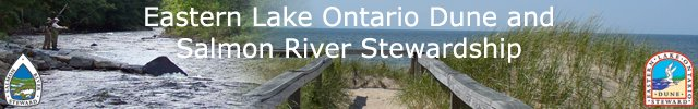 Eastern Lake Ontario Dune and Salmon River Stewardship