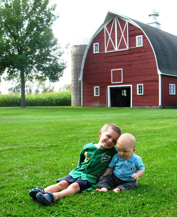 The Boys at the Princeton Family Farm