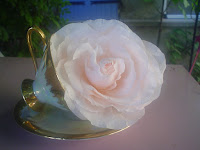 Rose Marie -Antoinette