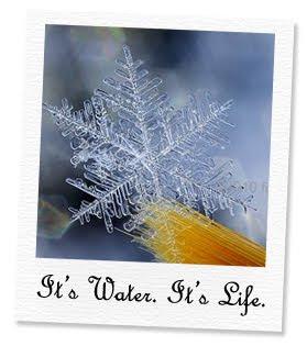 it's water. it's life.