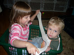 Kids in a Basket