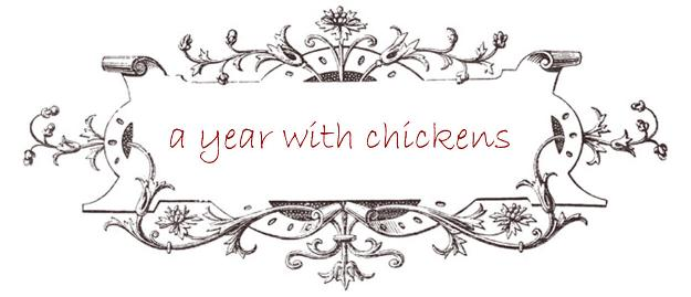 a year with chickens