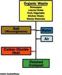 Mikroba Pengurai Dalam Peran Mendekomposisi Sampah Menjadi Kompos (Composting Process)