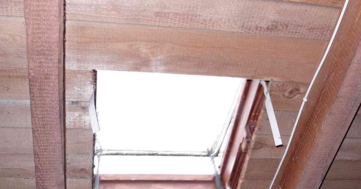 protier schmetterlinge retten und bei sonnenschein dachfenster ffnen. Black Bedroom Furniture Sets. Home Design Ideas