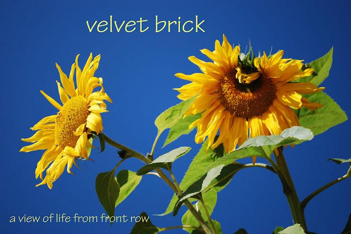 Velvet Brick