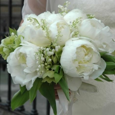 Wedding planner la betulla bouquet sposa particolari for Camelie bianche