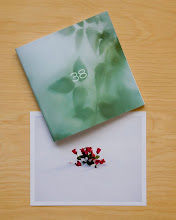 38 Booklet + Print, Edition of 150