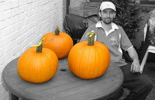 Coloured Pumpkins.