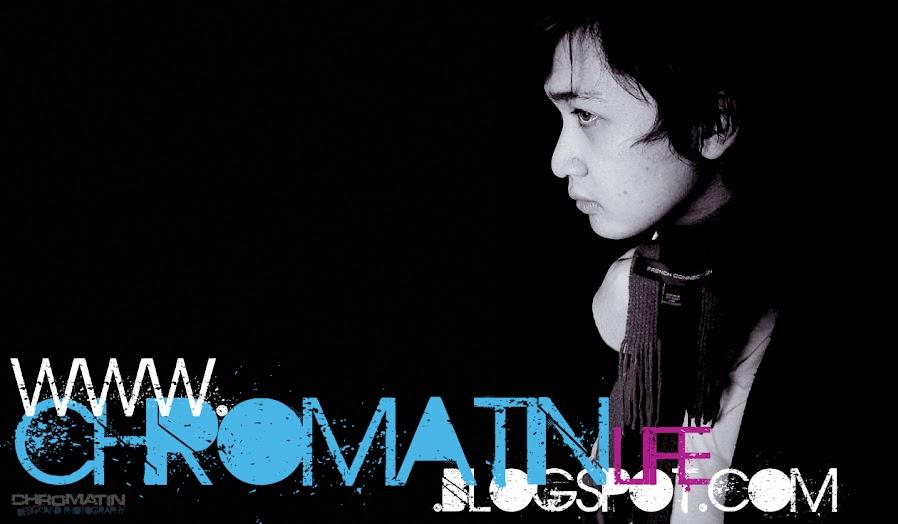 Chromatin life