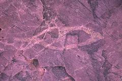 Jeffers Petroglyph #2