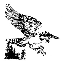 The Osprey Online