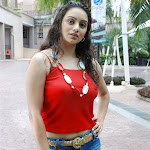 Telugu Actress Hema Malini
