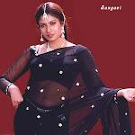 Actress Transparent Saree
