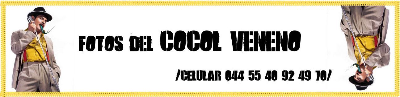FOTOS DEL COCOL VENENO