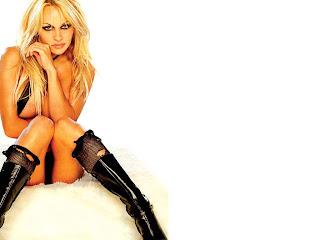 Pamela Anderson wallpaper II | sexy girl porn
