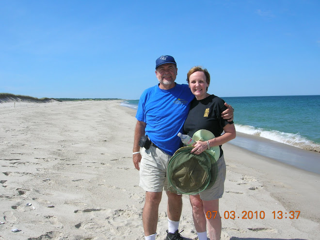 On the Beach, Cape Cod