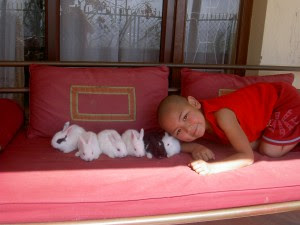 The Unmistaken Child loves animals