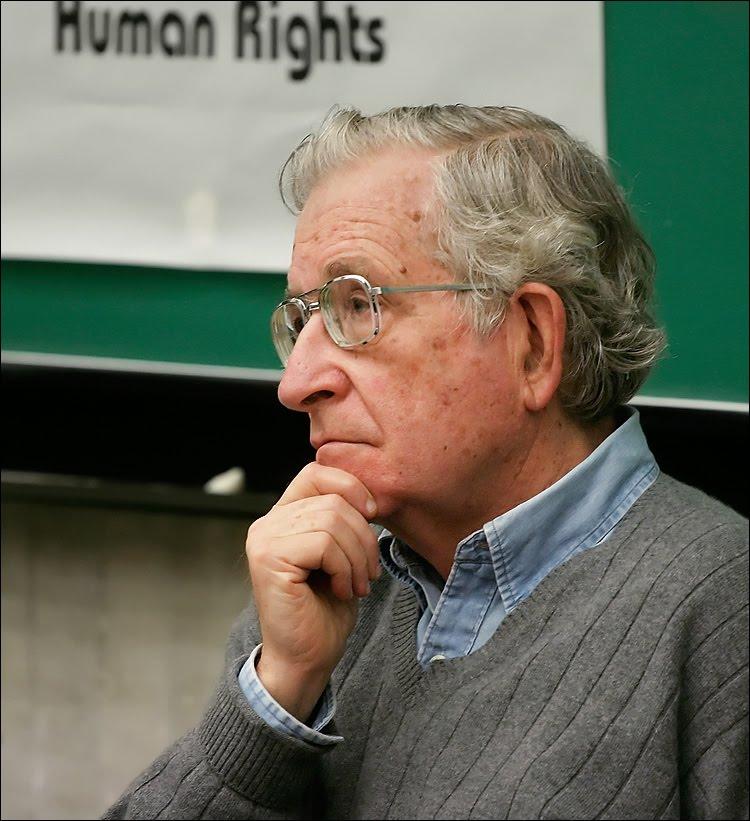 Chomsky On Human Nature Anchro Synadicalism
