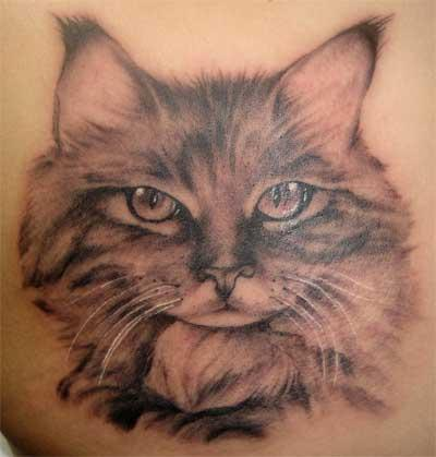 Some people like to have their cats personality incorporated into the tattoo