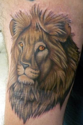 This lion, for example, Excellent quality head ink.