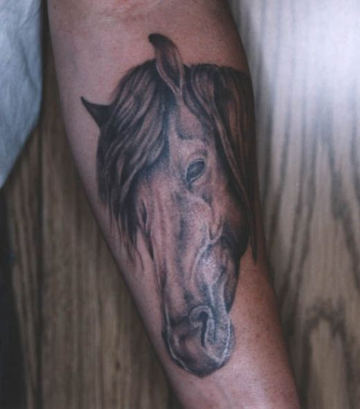 tattoos on head. Horse Head Tattoos
