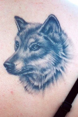 Tattoo Art | Tattoo Gallery: Wolf Head Tattoos