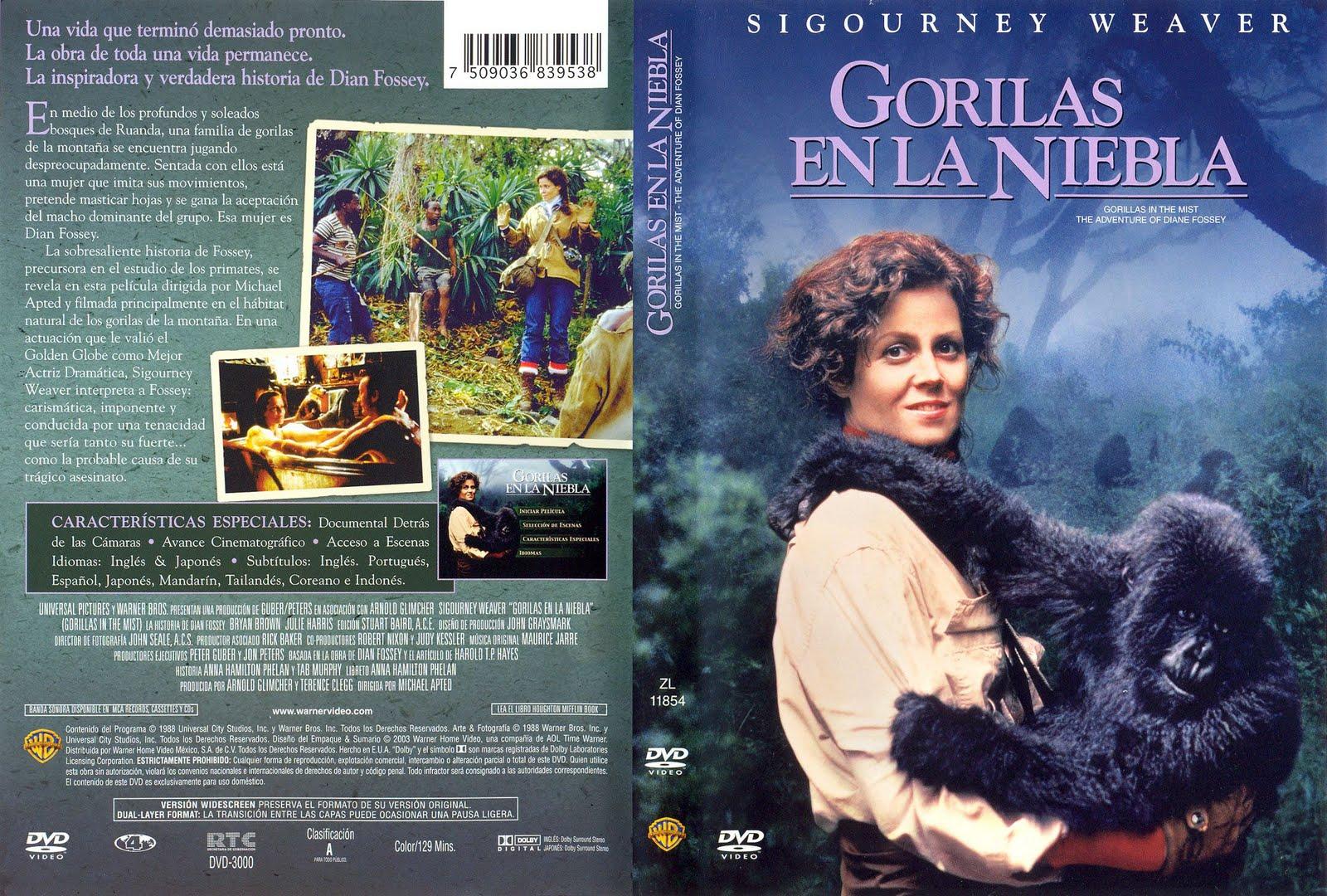 Peliculas en dvd gorilas en la niebla for Gorilas en la niebla