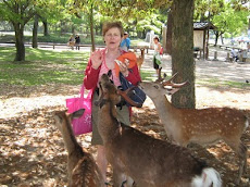 Carole with deer in Nara