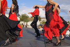Fotografia vencedora na categoria O MOVIMENTO O CORPO E A DANÇA - Abril 2009