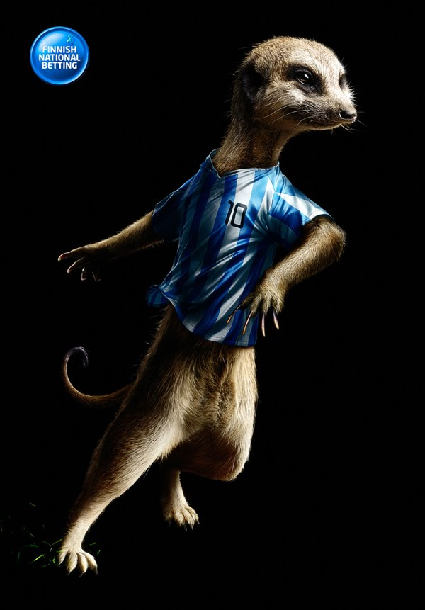 Veikkaus Football Betting: Meercat
